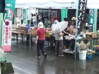 2009_08_09_3