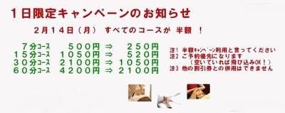 A_2011_02_13b_2
