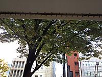 2012_10_31